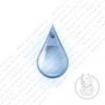 Agua | Recarga | 20 Lts.