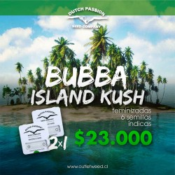 Promo 2x1 | Bubba Island Kush | Fem | Dutch Passion