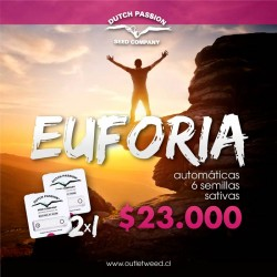 Promo 2x1 | Euforia | Auto | Dutch Passion