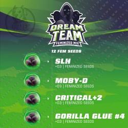 Semillas | Dream Team Fem Mix | 12 semillas | Fem | BSF