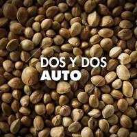 Semillas | Dos y Dos | Auto | 10 semillas | Granel